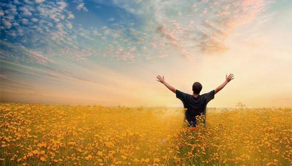 Вопрос читателя о бесполезных привычках, освобождении разума и своих целях